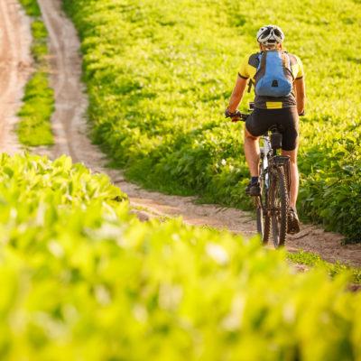 Cyklistika na jaře