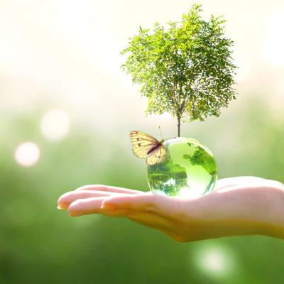 Ochrana přírody